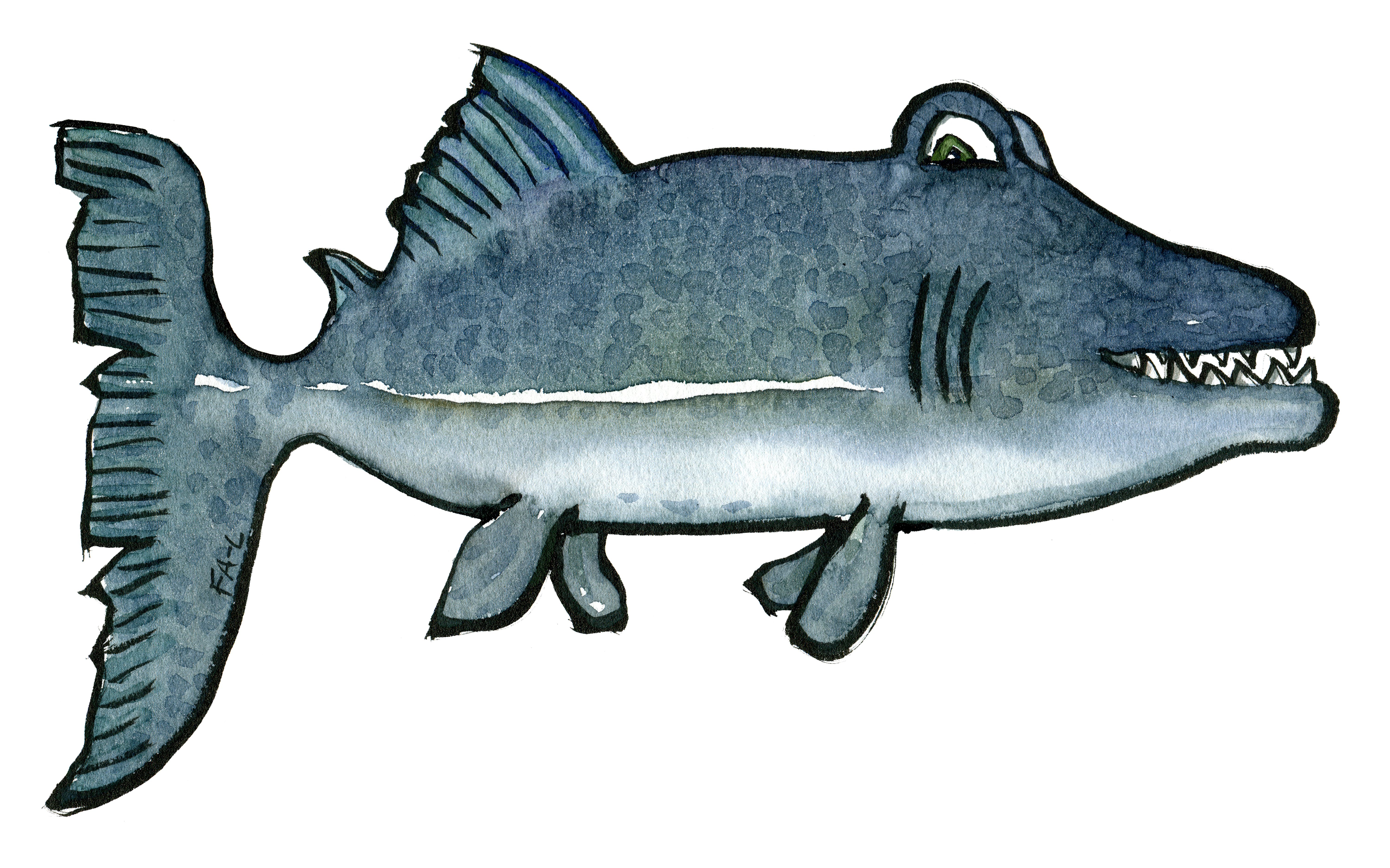 Drawing of a fish with sharp teeth